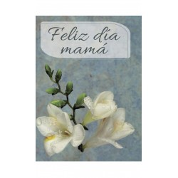 "MINI CARD ""CON TODO MI AMOR"" /6"