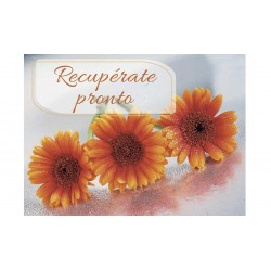 MINI CARD -RECUPERATE PRONTO- /17